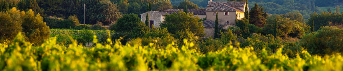Provence Villa Rental Search Results