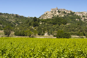 Vacation Villas in Gordes