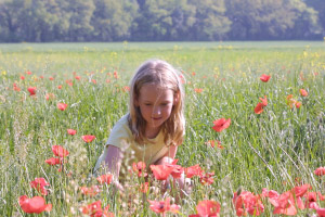 Children's Activities in Provence