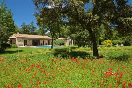 Vacation Rentals at Villa Bongout