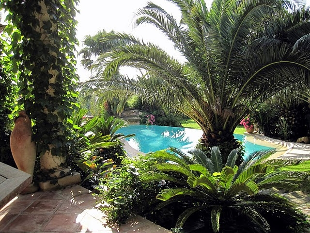 Photo number 40 of Villa Bambou