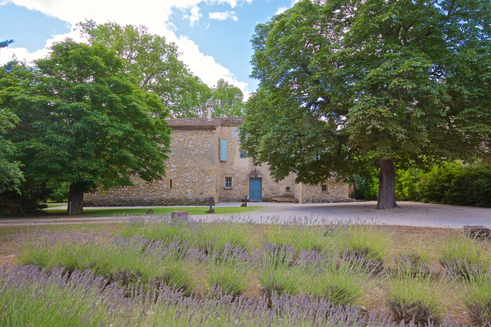 Photo number 72 of Bastide de Caireval