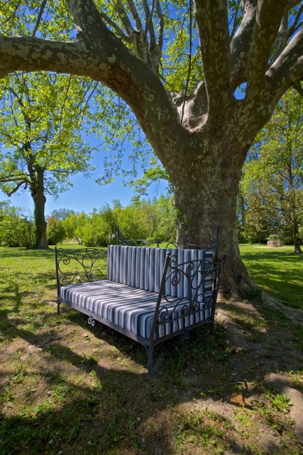 Photo number 98 of Bastide des Papes
