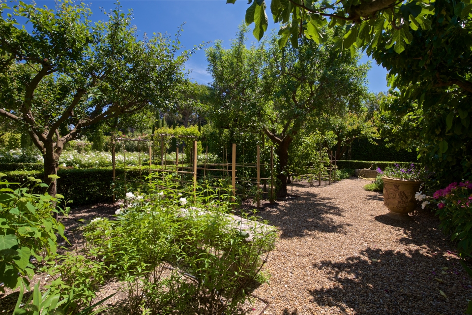 Photo number 80 of Mas la Closerie