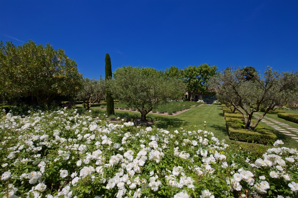 Photo number 61 of Mas la Closerie