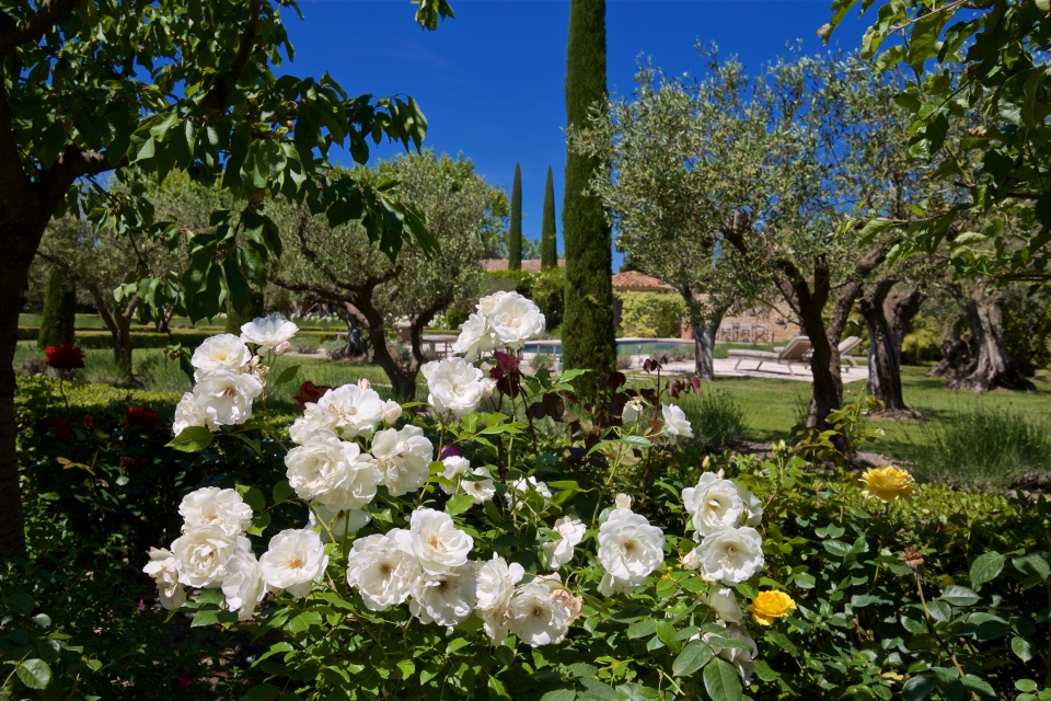 Photo number 46 of Mas la Closerie