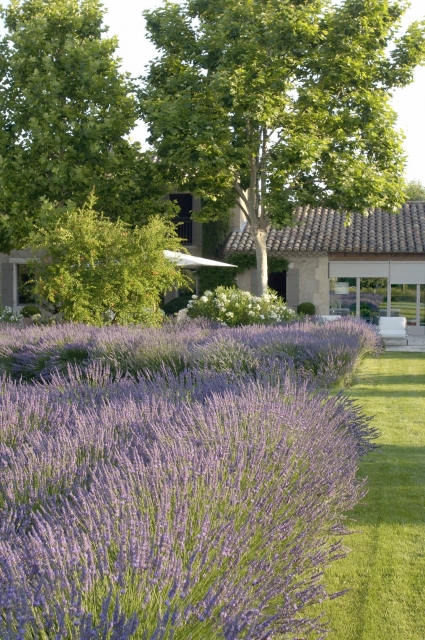 Photo number 76 of Mas la Closerie