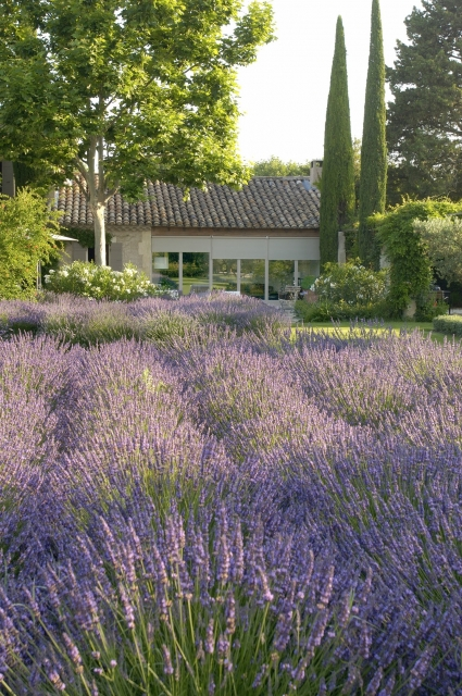 Photo number 49 of Mas la Closerie