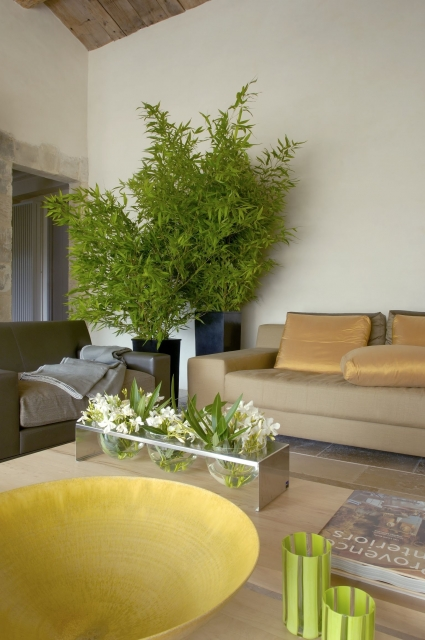 Photo number 65 of Mas la Closerie